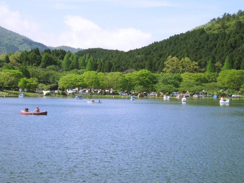 shidakako001